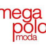 mega-polo-players-school